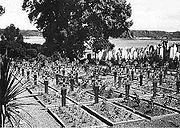 Occupation-German-cemetery.jpg